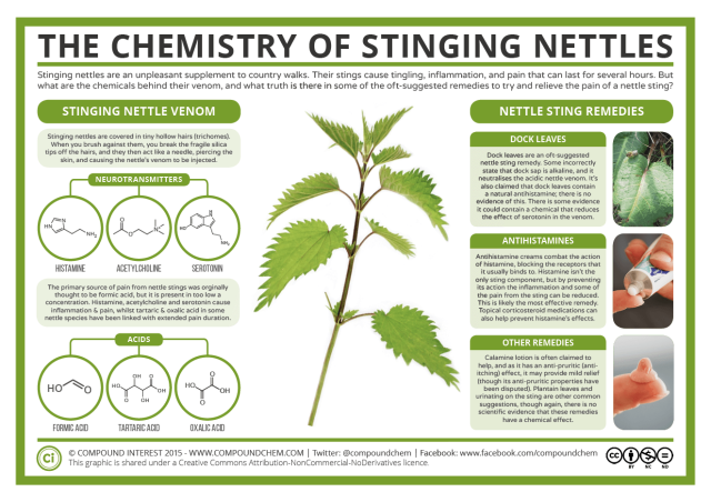 The-Chemistry-of-Stinging-Nettles-2016